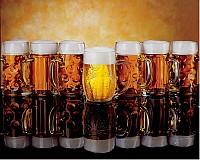 Пивной завод в Чехии, бокалы смотрят через века на вкус пива