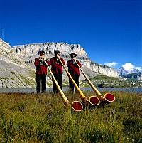 Предложение в Швейцарии