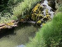 Колоссальный участок с домом и своим собственным источником воды в 12 км от Монако и от моря, на Лазурном берегу Франции.
