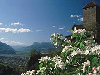 Гостиница в Тироле, 3 звезды на 80 мест в одном часе езды от Мюнхена.
