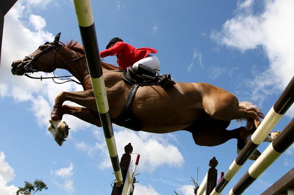 Клуб конного спорта,  в 10 км от центра Брюсселя, Бельгия