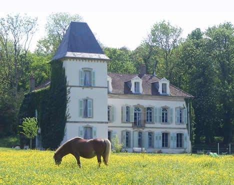 Просторный замок XVIII столетия во Франции в Безанко