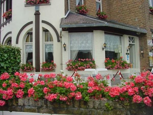 Красивый отель с рестораном на бельгийском побережье