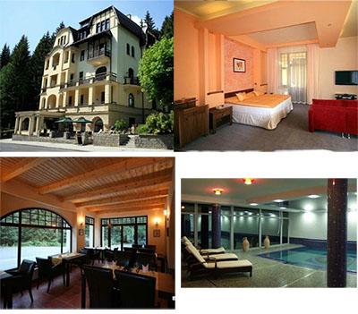 Гостиница в Чехии 4*, в 45 км от Карловарской здравницы, на территории заповедного леса