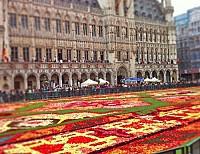 Редкое предложение в центре Брюсселя – участок для строительства.