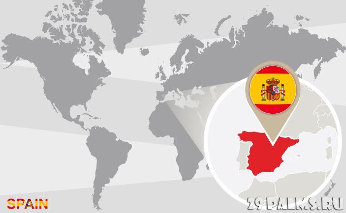 Готовая фирма в Испании