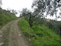 Плоский участок в Италии в историческом месте с видом на горы, в 10 мин. от пляжей Средиземноморья, рядом с Монако и Сан Ремо.