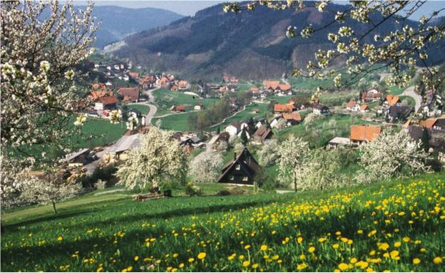 3* романтик-миниотель под Баден-Баденом, юг Германии