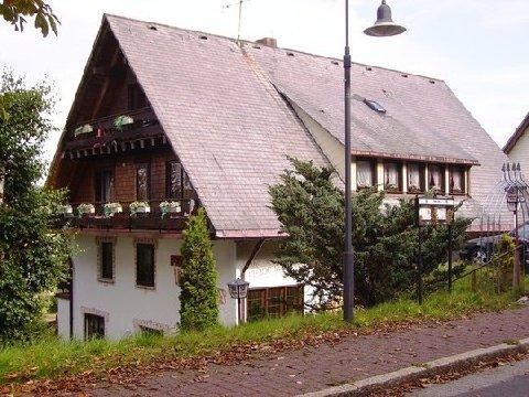Пансион с рестораном в горах Фельдберг, Шварцвальд, Федеральная земля Баден-Вюртемберг, Германия
